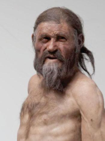 Imagen: Reconstrucción del hombre del hielo Ötzi tal como se presenta en el Museo Arqueológico del Tirol del Sur y que muestra el hombre de hielo con los ojos marrones según lo que indica su análisis genético (Fotografía cortesía del Museo de Arqueología de Tirol del Sur, Fotografía Ochsenreiter).