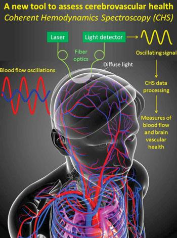Imagen: Una tecnología diagnóstica óptica, nueva, promete formas de identificar y monitorizar el daño cerebral como resultado de las lesiones traumáticas, la apoplejía o la demencia vascular, en tiempo real y sin necesidad de procedimientos invasivos (Fotografía cortesía de la Universidad de Tufts).